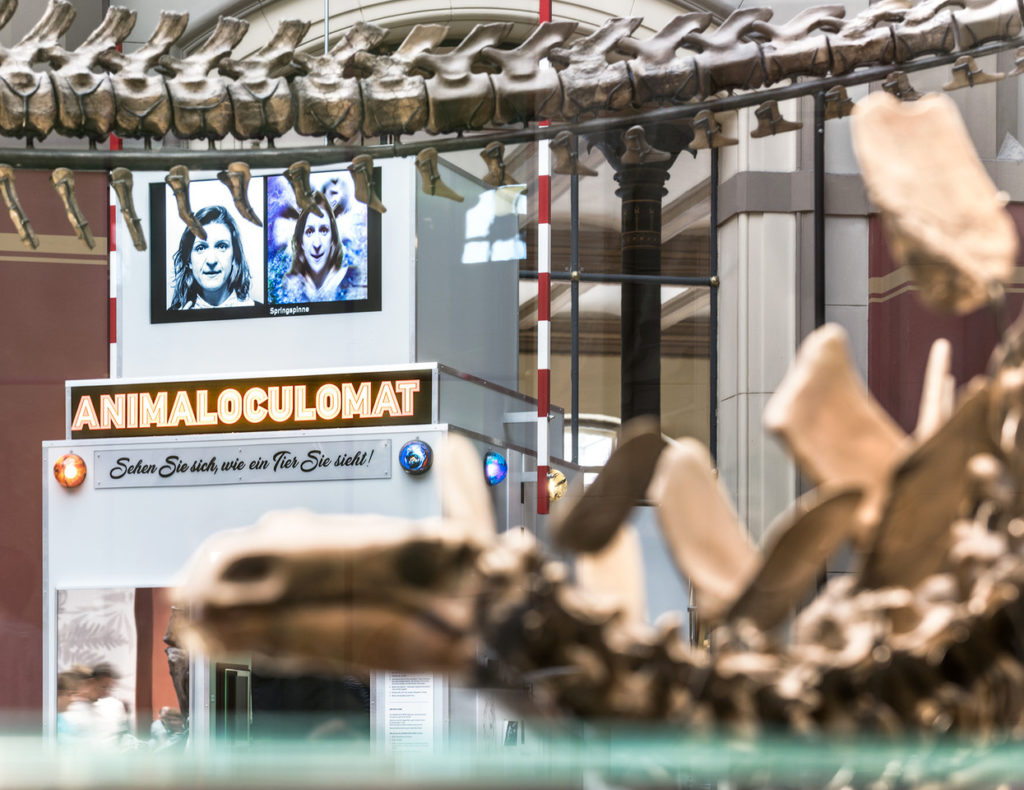 A multimedia sculpture entitled Animaloculomat with signs and photographs. Dinosaur skeletons in the foreground.