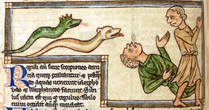 Image 3. 'A snake attack'. British Library, Harley MS 3244, f.59v [Source: www.bl.uk/catalogues/illuminatedmanuscripts/]