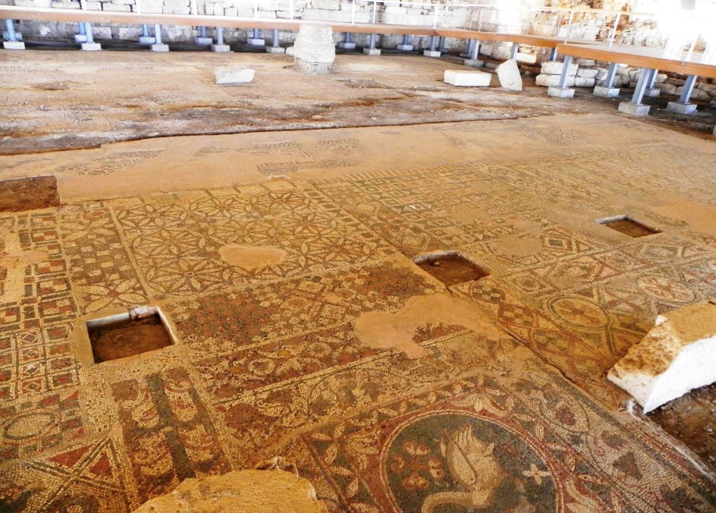 Image 7. View of the mosaic floor of the basilica of saint Auxibios at Soloi, Cyprus today (now in the northern occupied area). [Photo: Dr. Doria Nicolaou, with permission]