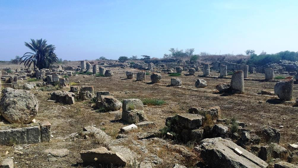 Image 8. General view of the basilica of saint Epiphanios at Salamis, Cyprus today (now in the northern occupied area). [Photo: Rania Michail, with permission]