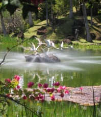 Na Aina Kai Botanical Gardens, Kilauea, Hawaii